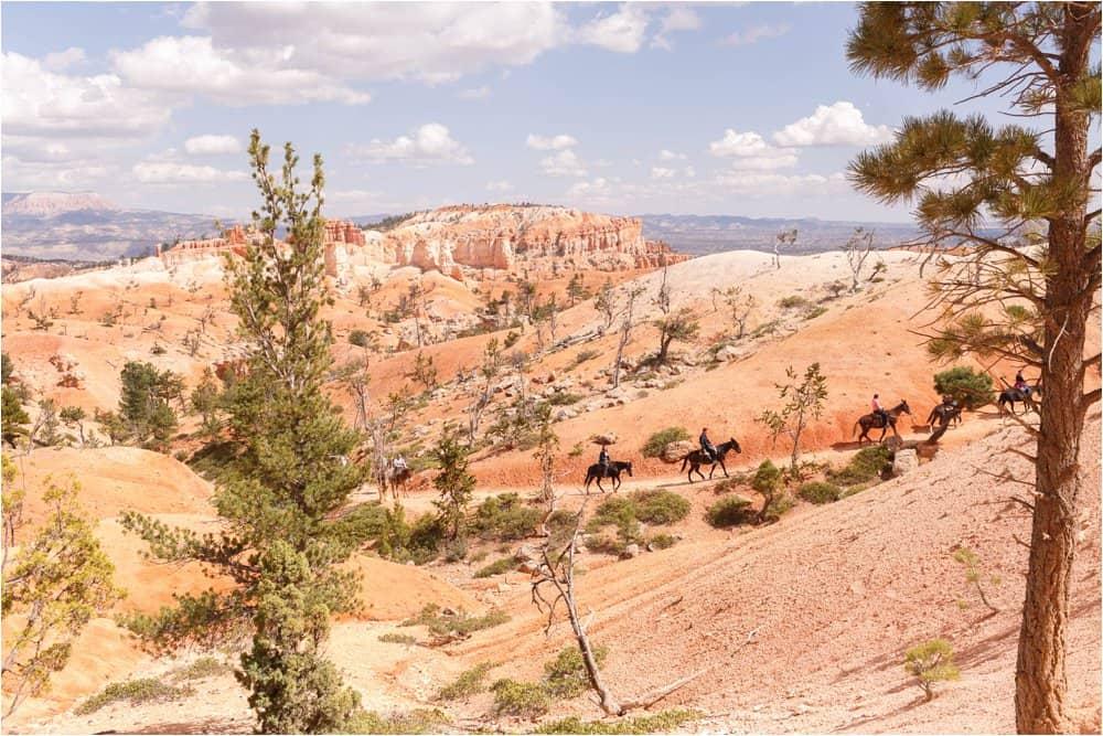 utah and arizona photos