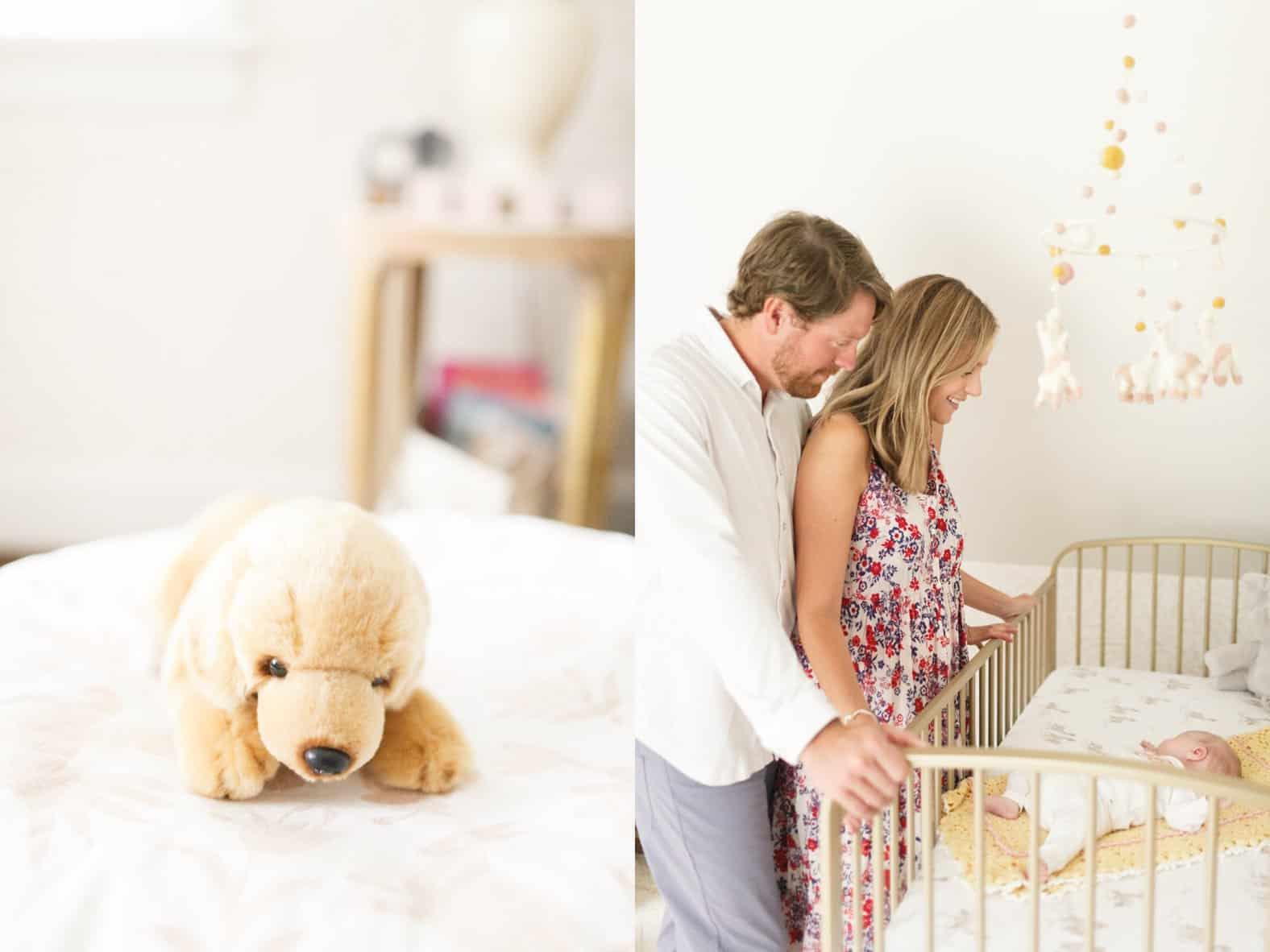 richmond virginia newborn photos nursery alpacas baby girl